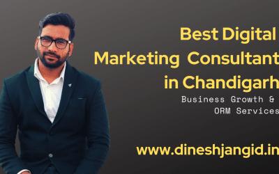 Best Digital Marketing Consultant in Chandigarh