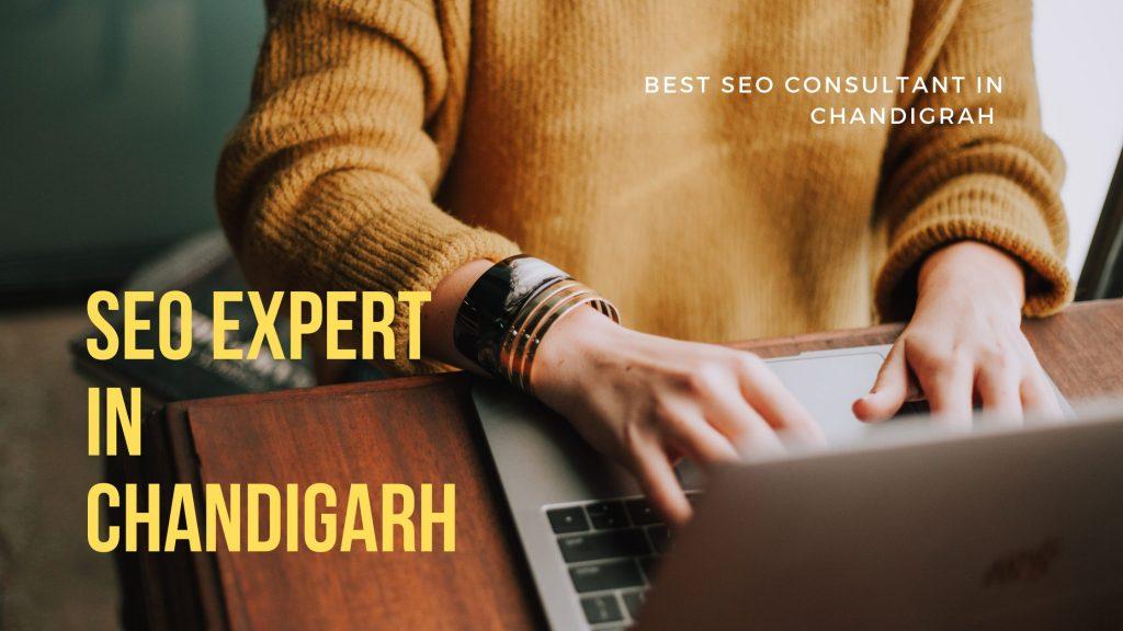 SEO Expert in Chandigarh