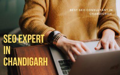 Best SEO Expert in Chandigarh– Dinesh Jangid